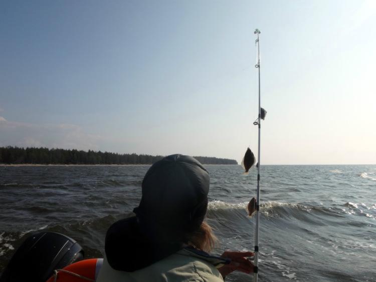 рыболовный прогноз клева на неделю архангельск