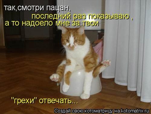 http://data22.gallery.ru/albums/gallery/150130-e35df-66771412-m750x740-u3e04f.jpg