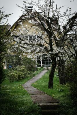 http://data22.gallery.ru/albums/gallery/251524-4b4fa-67035996-400-ua4cc7.jpg