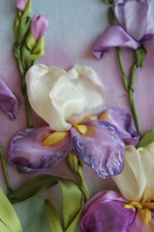 Цветок мак: посадка и уход в открытом грунте, виды и сорта