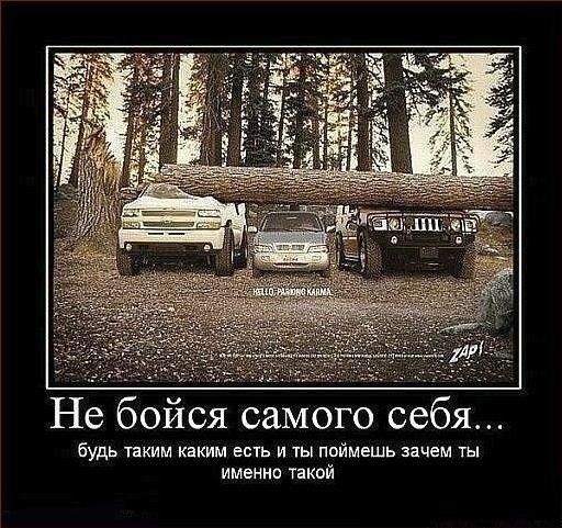 http://data22.gallery.ru/albums/gallery/350013-d529c-65867566-m549x500-ue5a1e.jpg